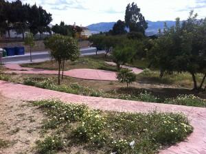 Rehabilitación Parque natural Ortosa - Puerto de la Torre - Málaga